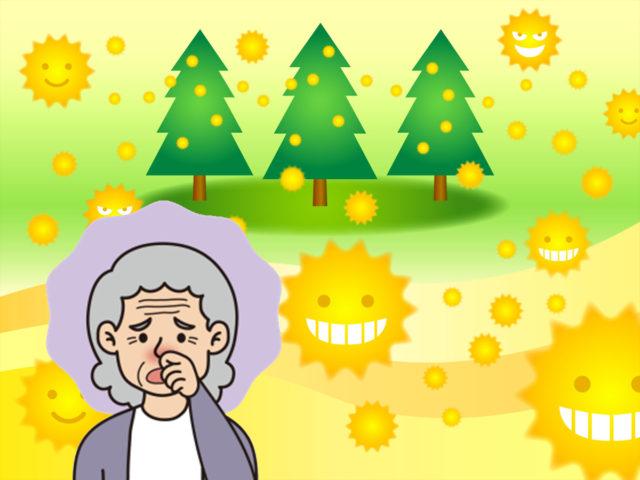 要注意!高齢者の花粉症